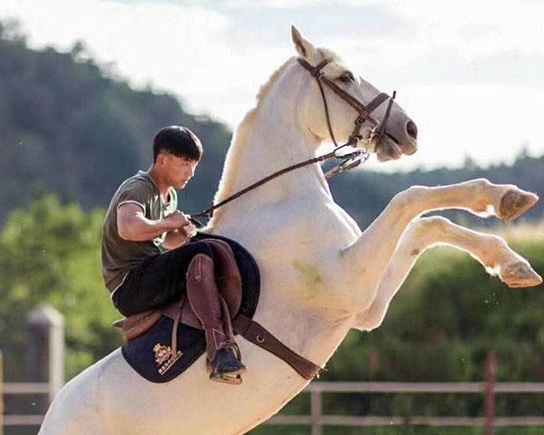 农家乐骑马