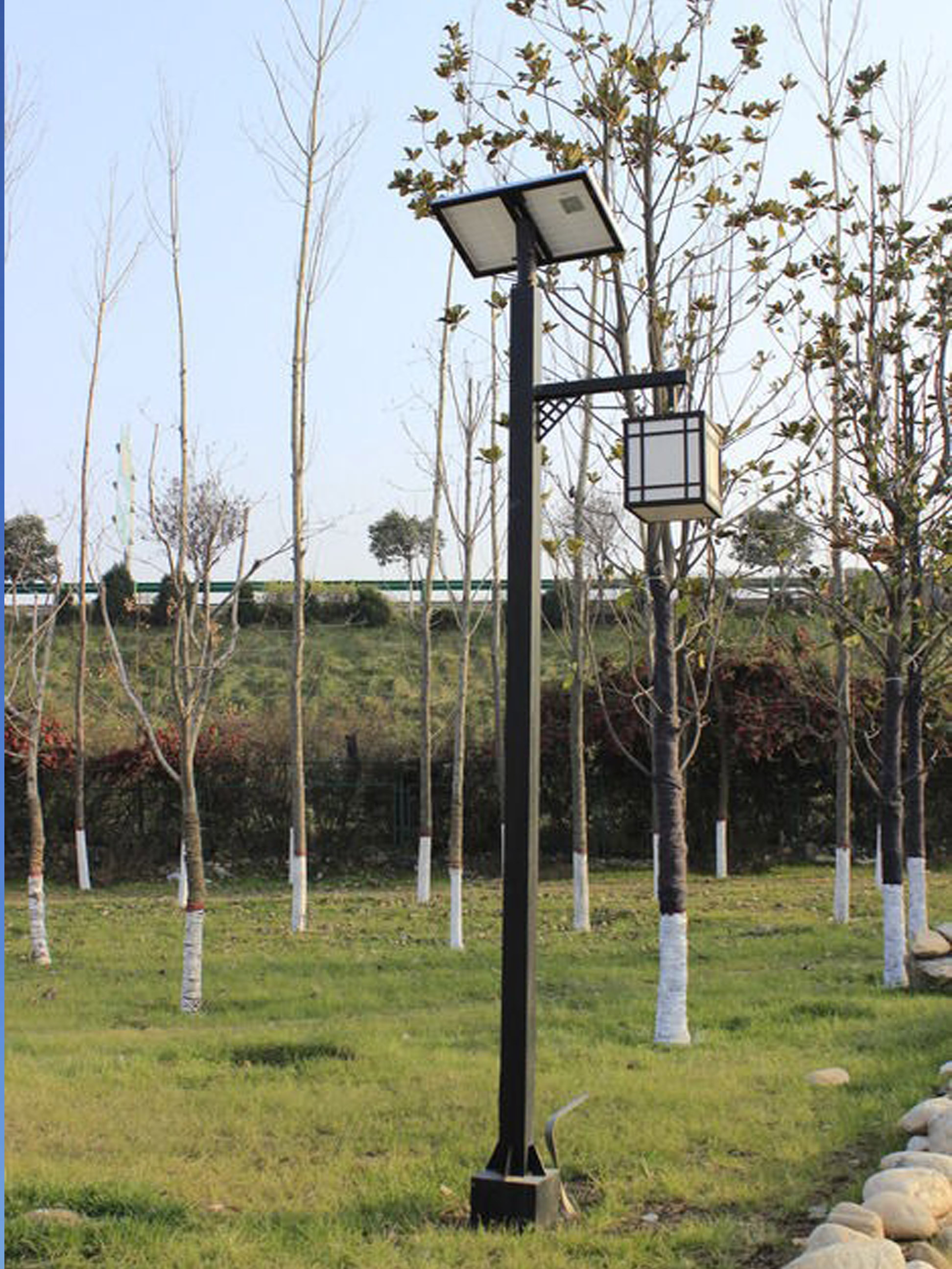 太阳能路灯案例3