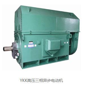 高压三相异步电机