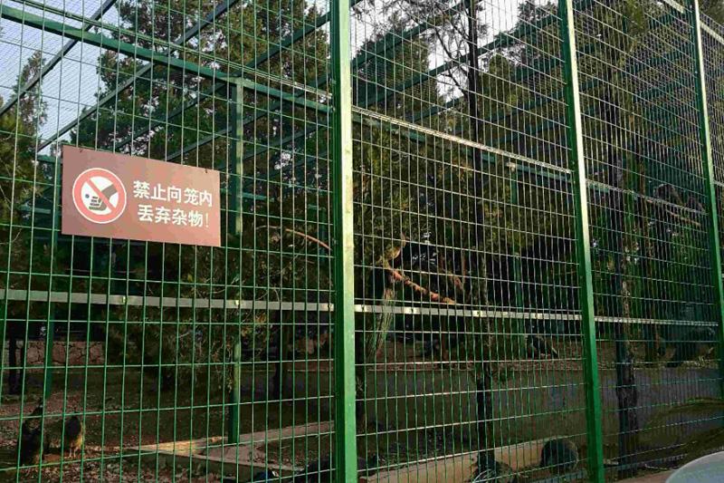 云南润腾丝网围栏网施工案例