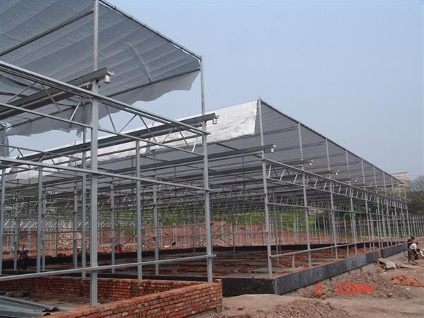 拱形薄膜温室大棚厂家