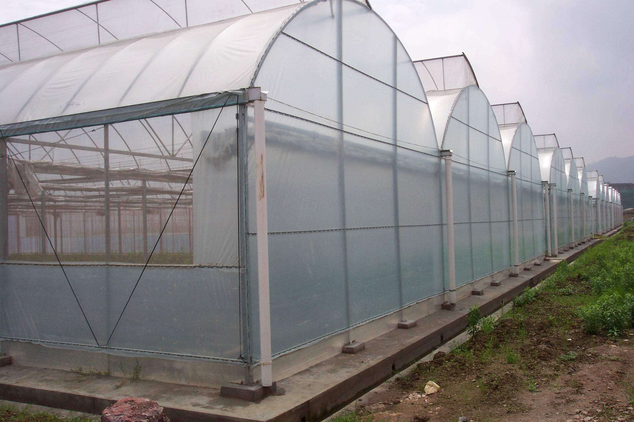 薄膜连栋温室大棚使用过程中如何给农作物施肥