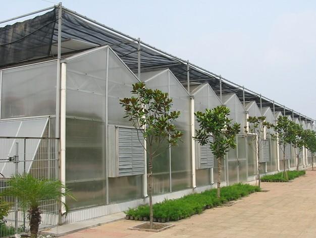 新型薄膜连栋温室大棚