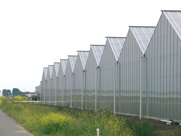 阳光板温室大棚骨架