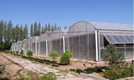 拱形薄膜温室大棚造价多少钱