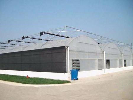薄膜温室大棚工程案例02