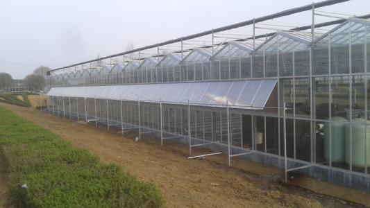 玻璃溫室大棚工程案例03