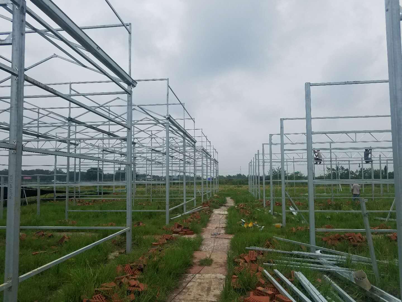 结构温室大棚