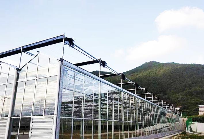 安徽璃温室大棚
