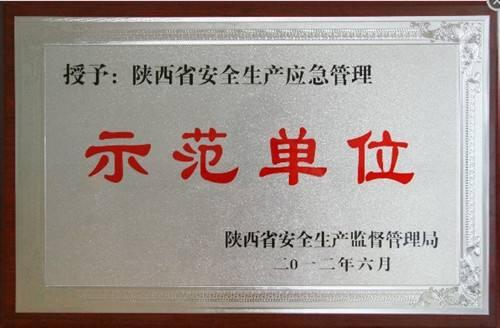 陕西省安全生产示范单位