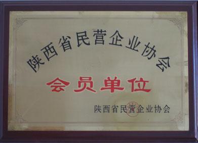 陕西省民营企业协会