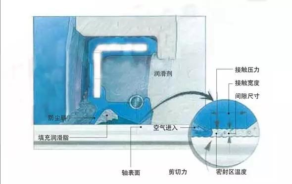 咸阳新凯伦密封件生产厂家为您分享油封的密封机理