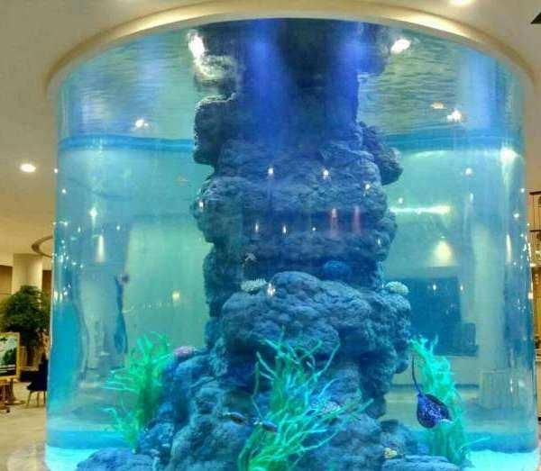 成都鱼缸定制_成都鱼缸定制安装_四川戏浪海洋馆设计