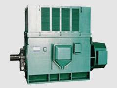 西玛电机YR系列绕线型6kV高压电机