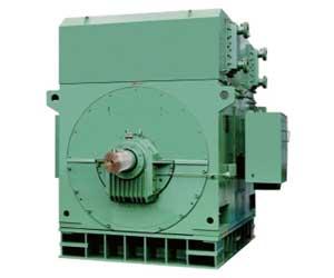YK高压电机-YK系列三相鼠笼型大型高速高压电机
