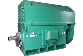 西玛YTM/YHP/TMPS系列6KV磨煤机电机