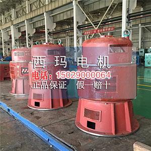 JRL系列6KV立式绕线高压电机