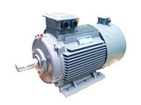YVF2系列三相交流变频电动机