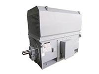 YVF系列交流变频电动机