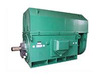 大型高压电动机的轴承故障防治方法