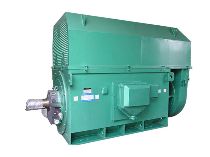 低压大功率电机