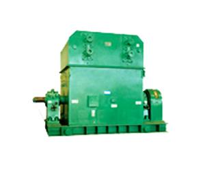 T系列大型上水冷三相同步电动机