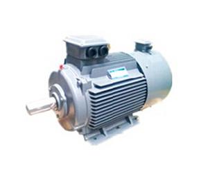变频调速电动机-YVF2系列变频调速三相异步电动机