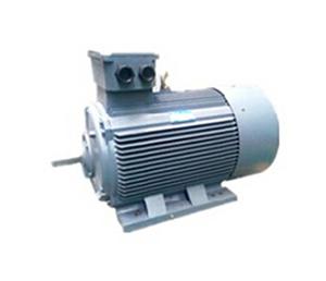 Y2系列紧凑型高压三相异步电动机