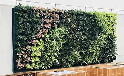 餐饮咨询公司立体绿植工程案例