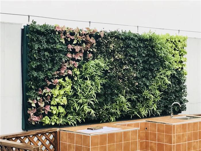 四川大型绿植墙定制厂家