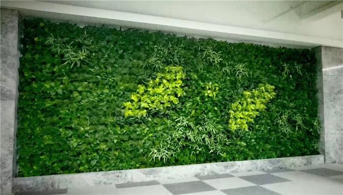 美丽的屋顶绿化