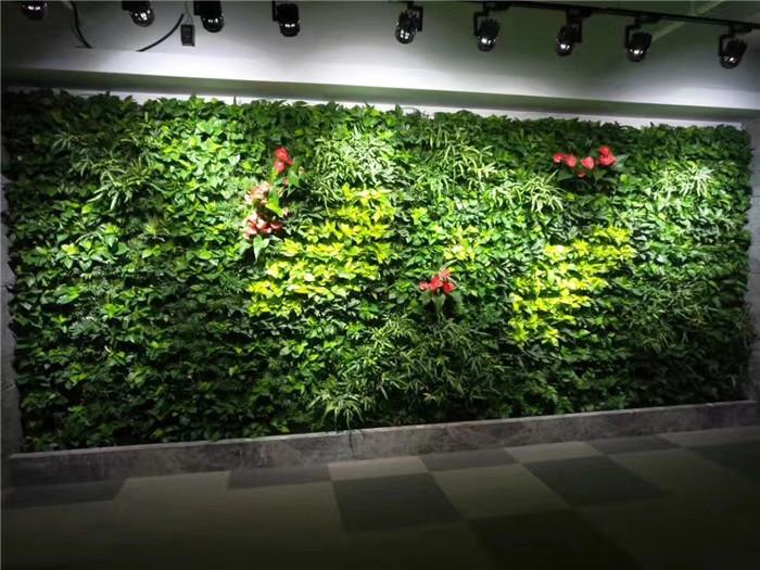 成都仿真室內綠植墻:垂直綠化之仿真植物墻