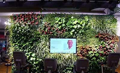 全国连锁健身房立体绿化植物墙工程案例