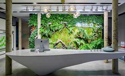 铁汉一方室内植物墙设计