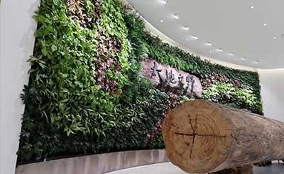 办公室绿植布置