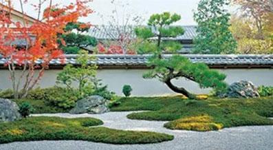 室外绿植景观造型