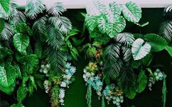 室内仿真植物墙的优点,你了解多少?