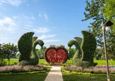 四川造型生态绿雕公司