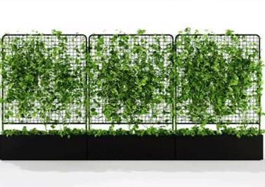 四川装扮绿植墙定制厂家