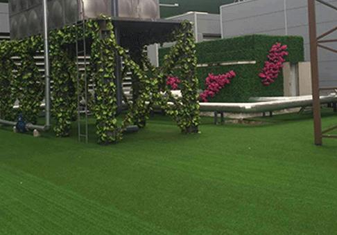 四川大型仿真绿植墙公司