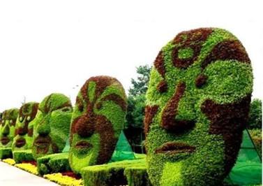 成都景观造型生态绿雕公司