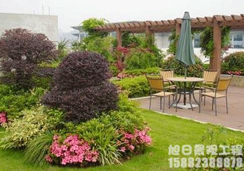 屋顶园林绿化