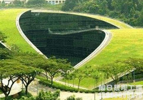 人造屋顶绿化