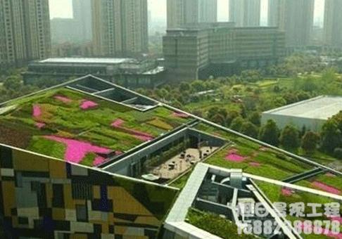 重型屋顶绿化