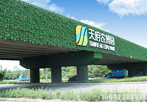 成都植物墙垂直绿化