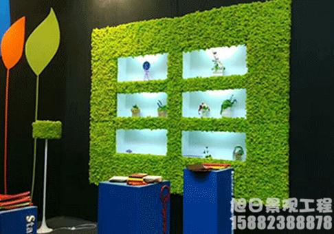 青苔植物垂直绿化