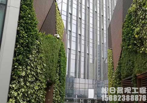 大型仿真绿植墙