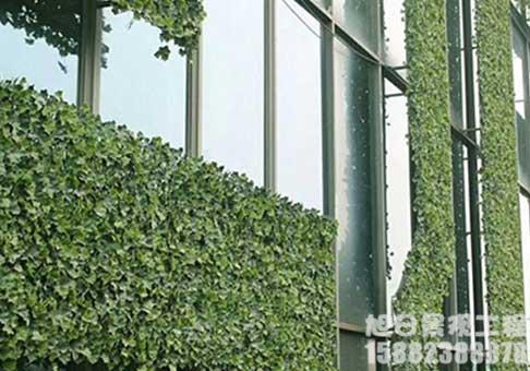 四川大型绿植墙