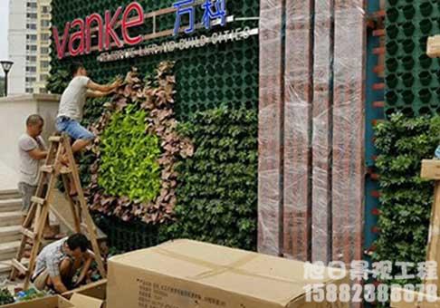 四川装扮绿植墙