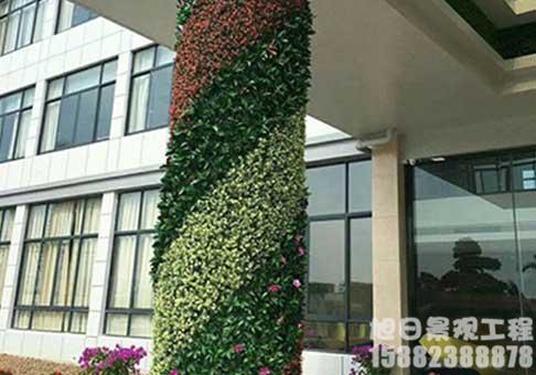 墙体绿化绿植墙